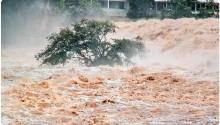 """2012年被""""达维""""虐,今年又被""""温比亚""""侵袭,为什么受伤的总是寿光?"""